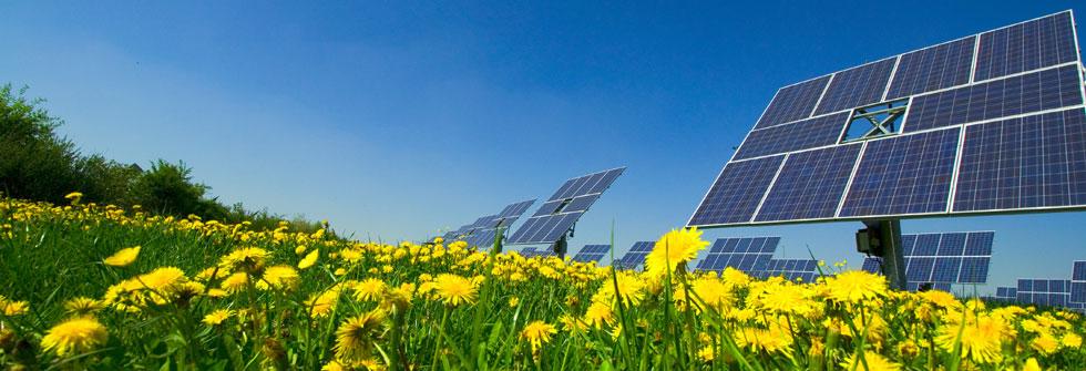 energieumdenker_04_Solarfeld